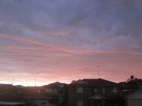 suburban Sydney sunrise
