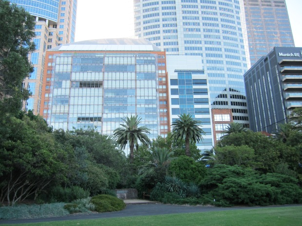 The CBD seen from Royal Botanic Garden Sydney